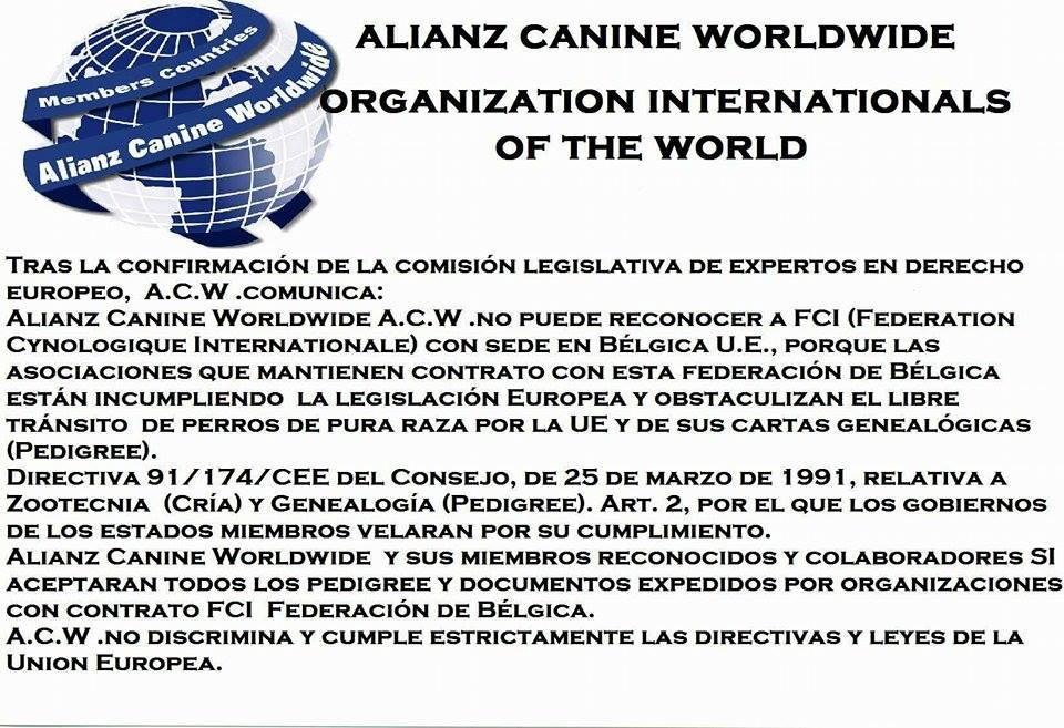 ACW no reconoce - Intimidaciones a Criadores en Panamá