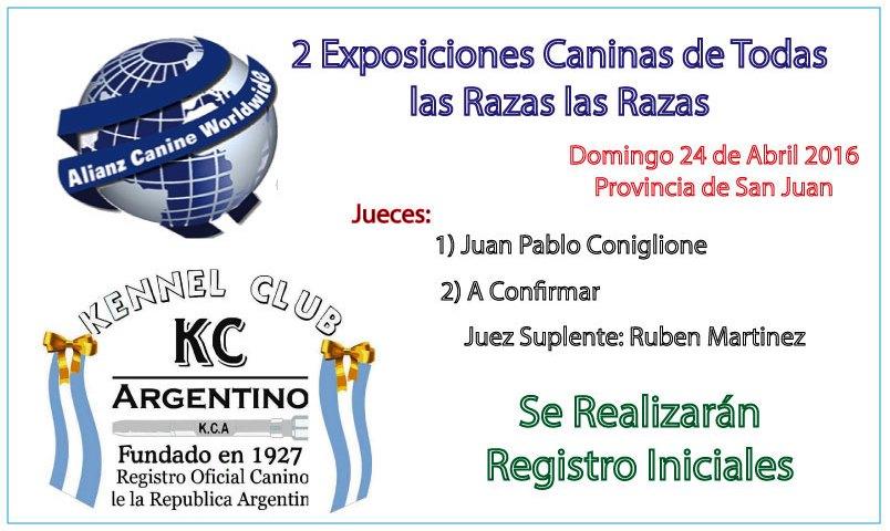 Exposición Canina San Juan 2016