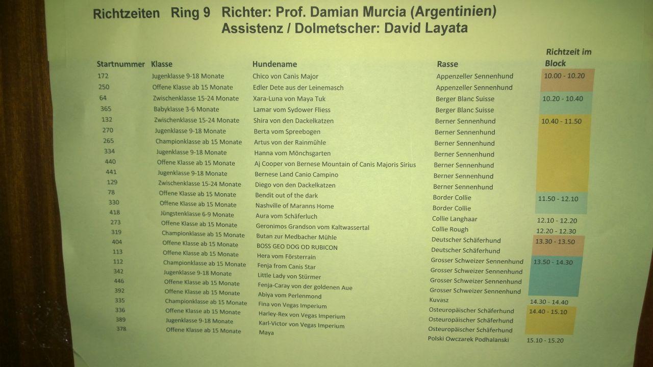 damian Mundial Alemania razas juzgadas