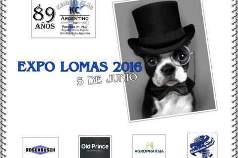 Campeón Lomas 2016