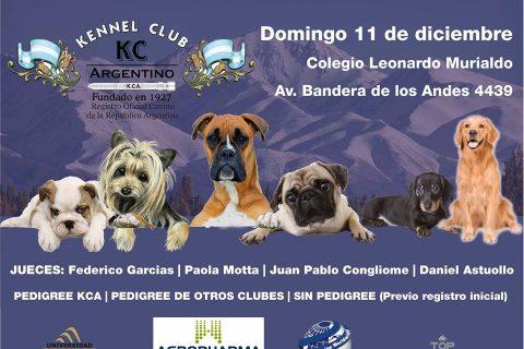 Exposición Internacional Mendoza