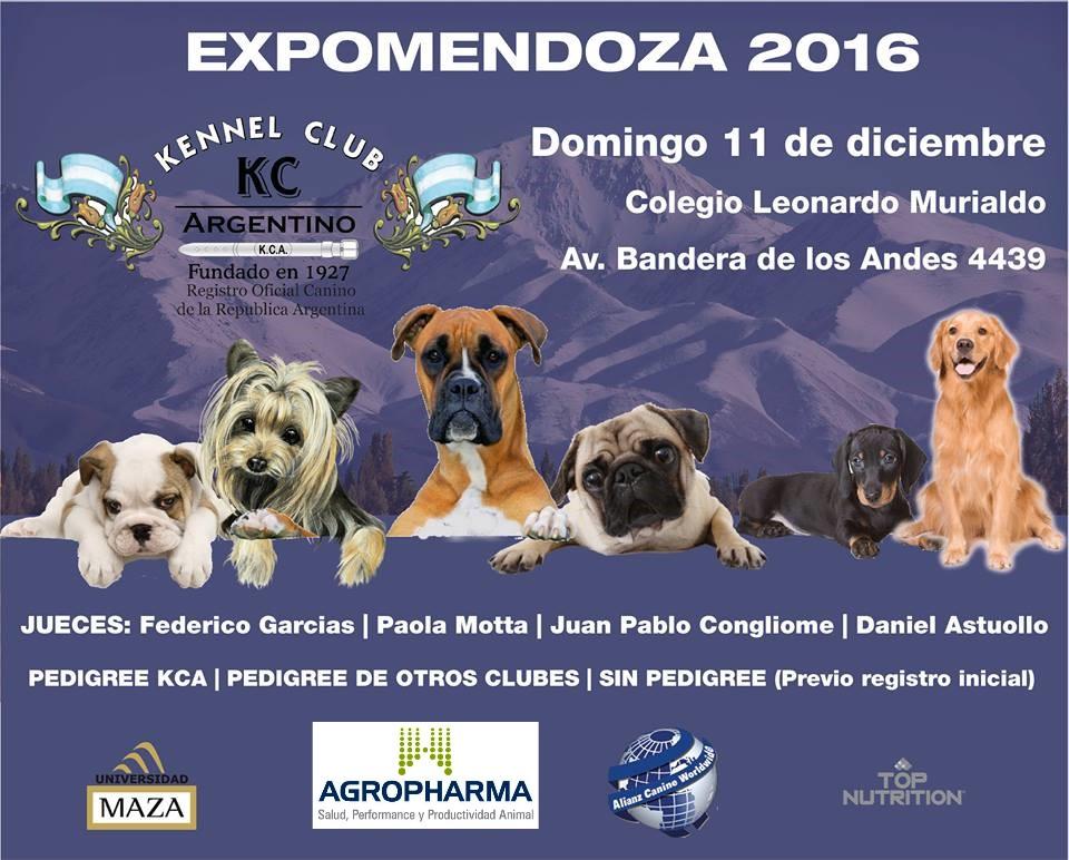 Exposición Internacional Mendoza, 11 de diciembre 2016