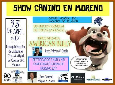 Largamos la primera Exposición en la Ciudad de Moreno en Buenos Aires, presentando la Nueva Delegación Oficial del Kennel Club Argentino y al American Bully Club.