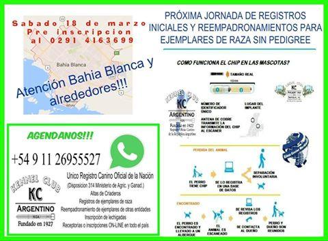 Jornada de Registros Iniciales Bahía Blanca