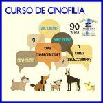 Curso de Cinofilia y Crianza Profesional