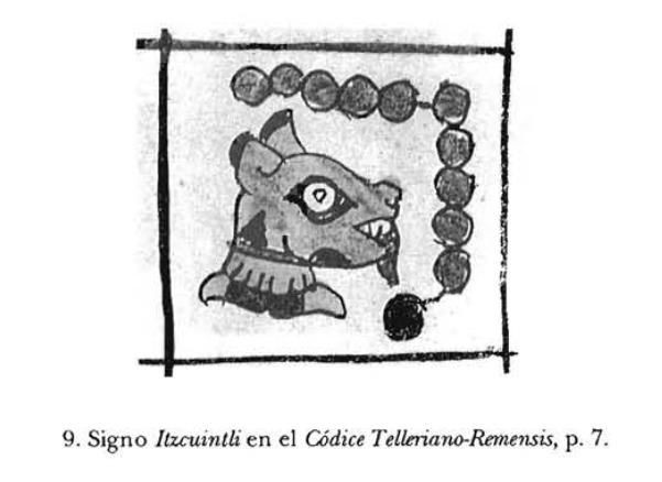 signo Itzucuintli Codice Telleriano - Remensis. El Perros en la Religiones