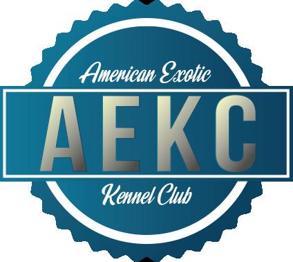 logo AEKC