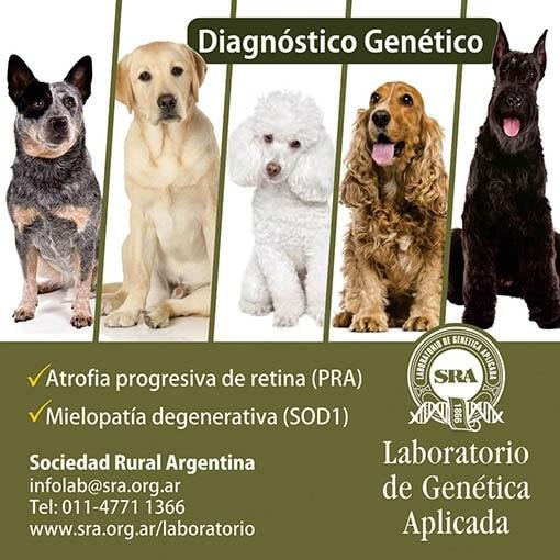 ADN Laboratorio de genética de la Sociedad rural argentina