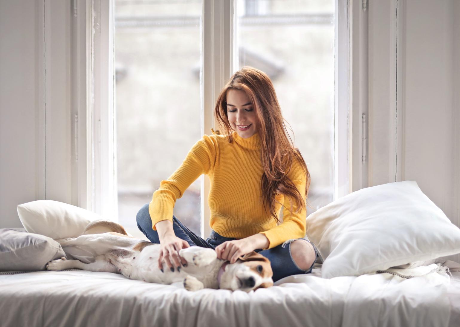 mujer con perro - registros de propiedad en los caninos