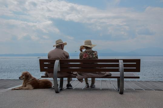 pareja sentados frente a la playa con perro