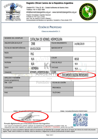 DOCUMENTO PDF PROVISORIO